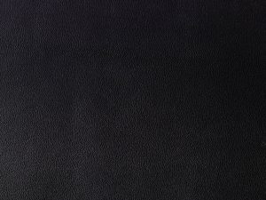 cuir-noir