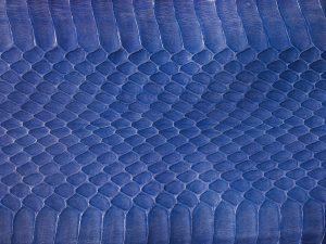 serpent-bleu