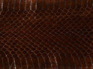 serpent-marron